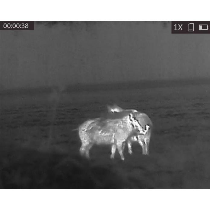 Термална камера HIKMICRO OWL OH25, 384×288, 25mm, 50Hz