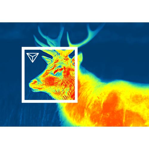 Термален прицел Pulsar Thermion 2 XQ50